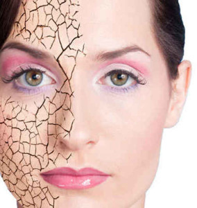сухая кожа лица причины