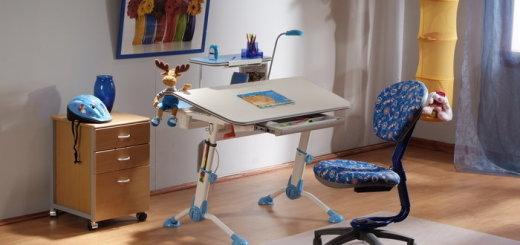 стол для школьника для дома фото