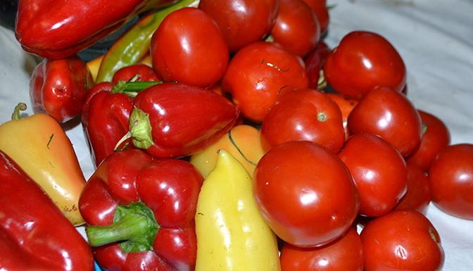 помидоры на зиму простые рецепты приготовления