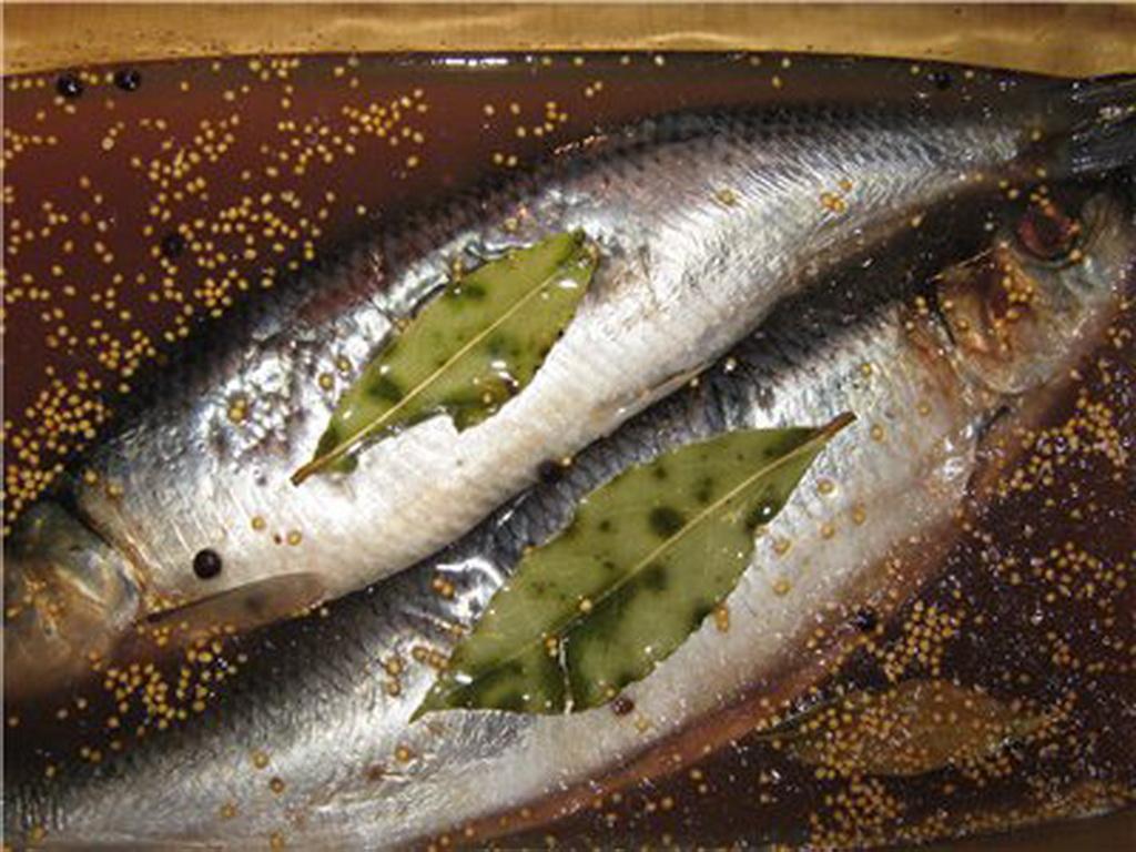 Как солить рыбу в домашних условиях селедку