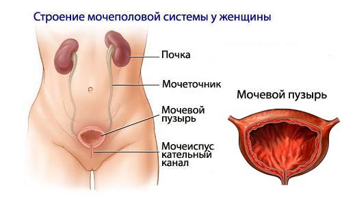 Как лечить боль в мочеиспускательном канале у мужчин