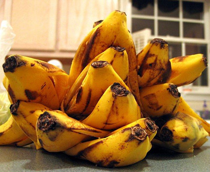Как вырастить бананы в домашних условиях из банановой кожуры
