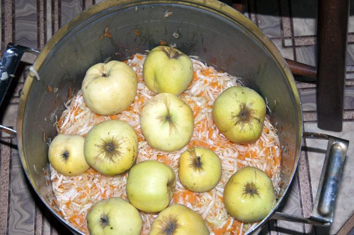 Как заквасить яблоки в домашних условиях 198