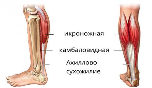 почему во время месячных болят ноги