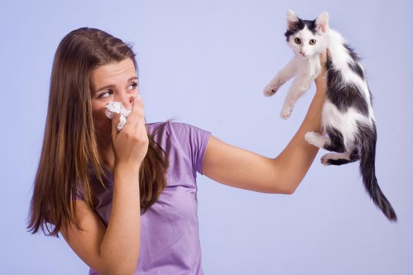 симптомы аллергии на кошек у взрослых