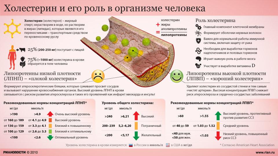 Почему может быть повышен холестерин у вегетарианцев